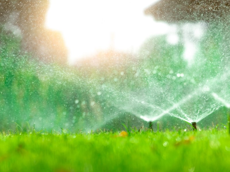 Artsy photo with green grass and close-up of sprinklers with bright light behind